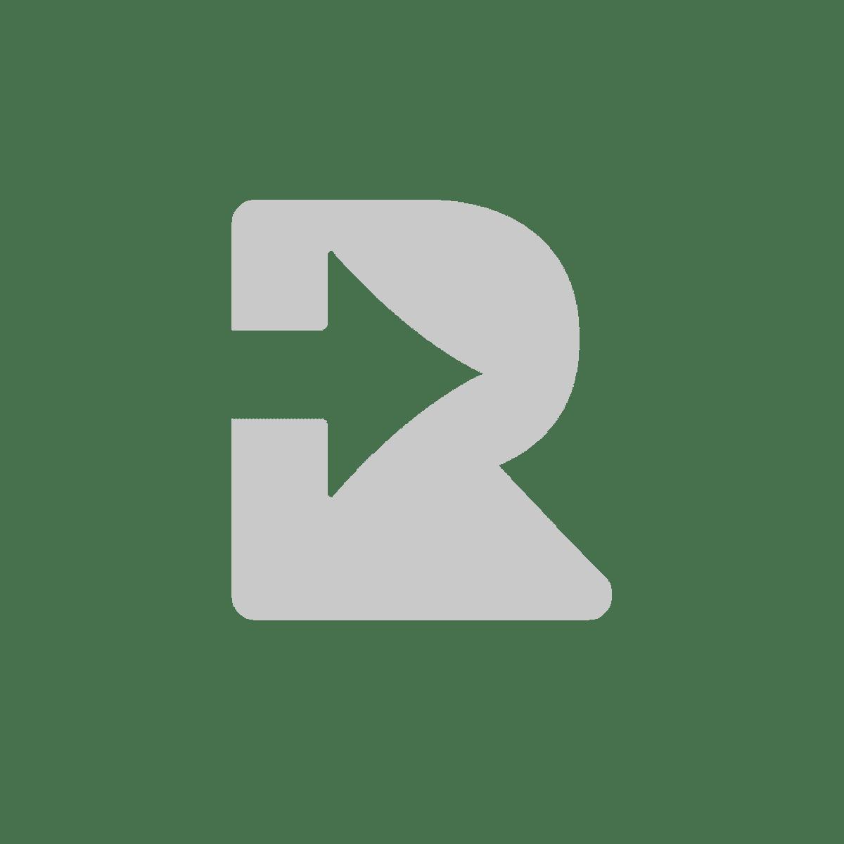 Romer App Logo